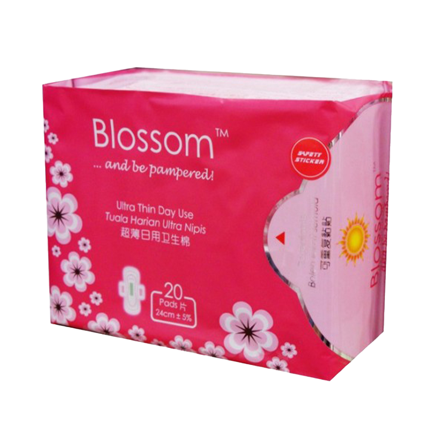 Blossom Day Use Ultra Thin Wing 20's